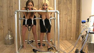 Daisy and her slutty girlfriend get abused real hard BDSM