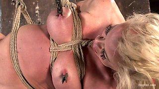 Nikki Delano in Blonde Bombshell Explodes In Extreme Bondage - HogTied