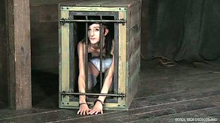Chick in cage watches how master spanks other slave